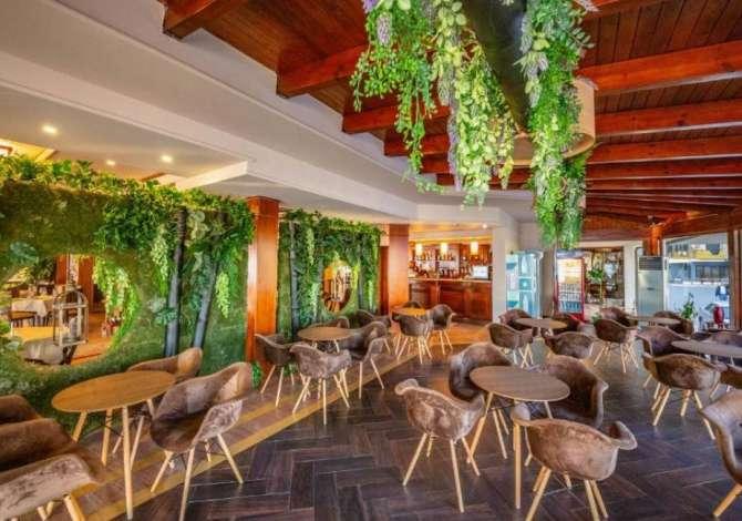 ndihmes kuzhinier Hotel Majestic kerkon te zgjeroje staf